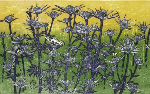 Printmaker Andrea Rich Brings a World of Nature to Maryhill Museum of Art - Maryhill Museum - Columbia Gorge