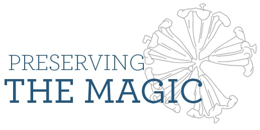 Preserving the Magic 2